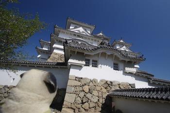 姫路城とくんぺい1