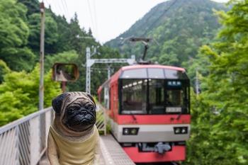 叡山電車 とくんぺい