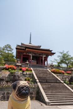 清水寺 西門