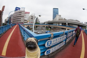 飯田橋陸橋