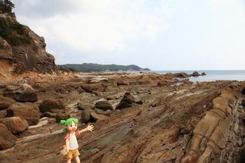 竜串海岸とよつば