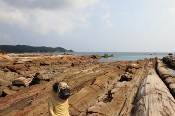 竜串海岸とくんぺい2