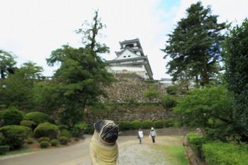 高知城とくんぺい