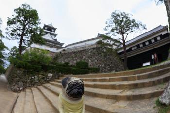 高知城とくんぺい2