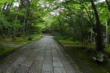竹林寺参道