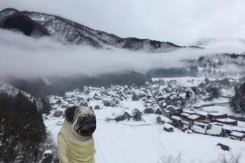 城山展望台からくんぺい