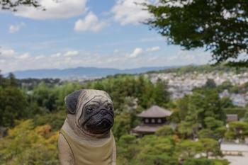 銀閣寺とくんぺい遠景