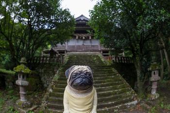 佐毘売山神社2