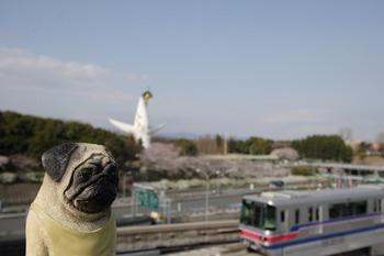 大阪モノレールと太陽の塔