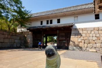 丸亀城一の門