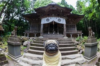 十和田神社本殿