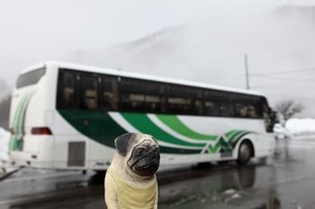 濃飛バスとぼく