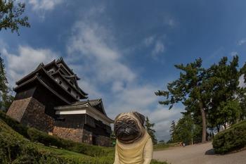 松江城とくんぺい君